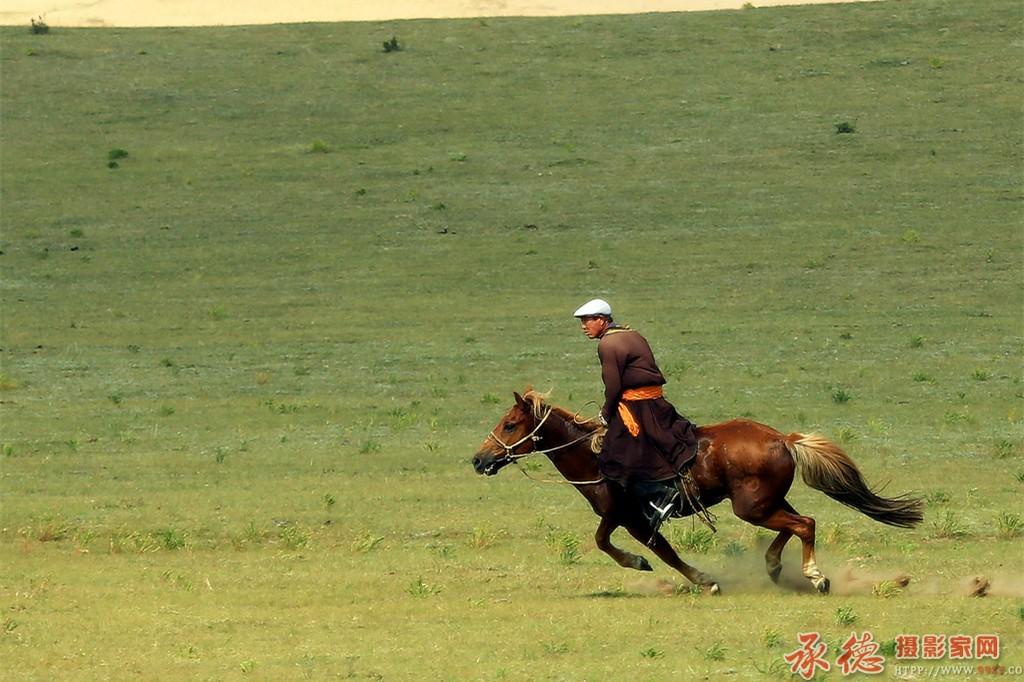 17草原骏马
