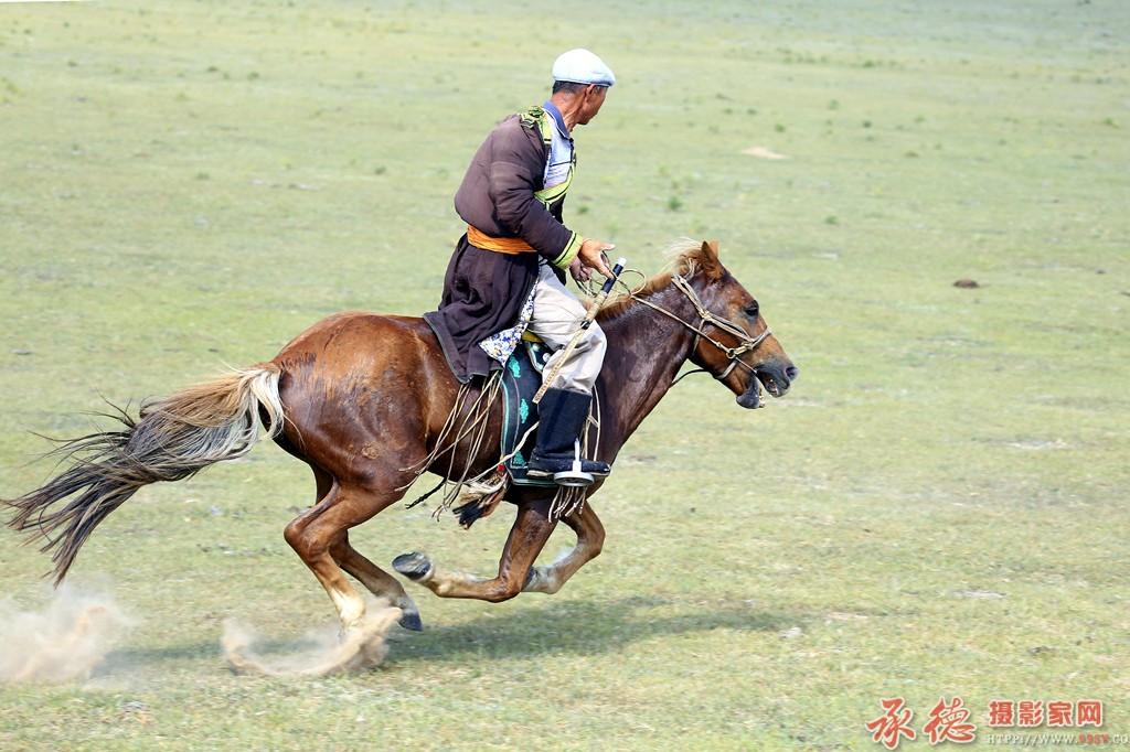 18草原骏马