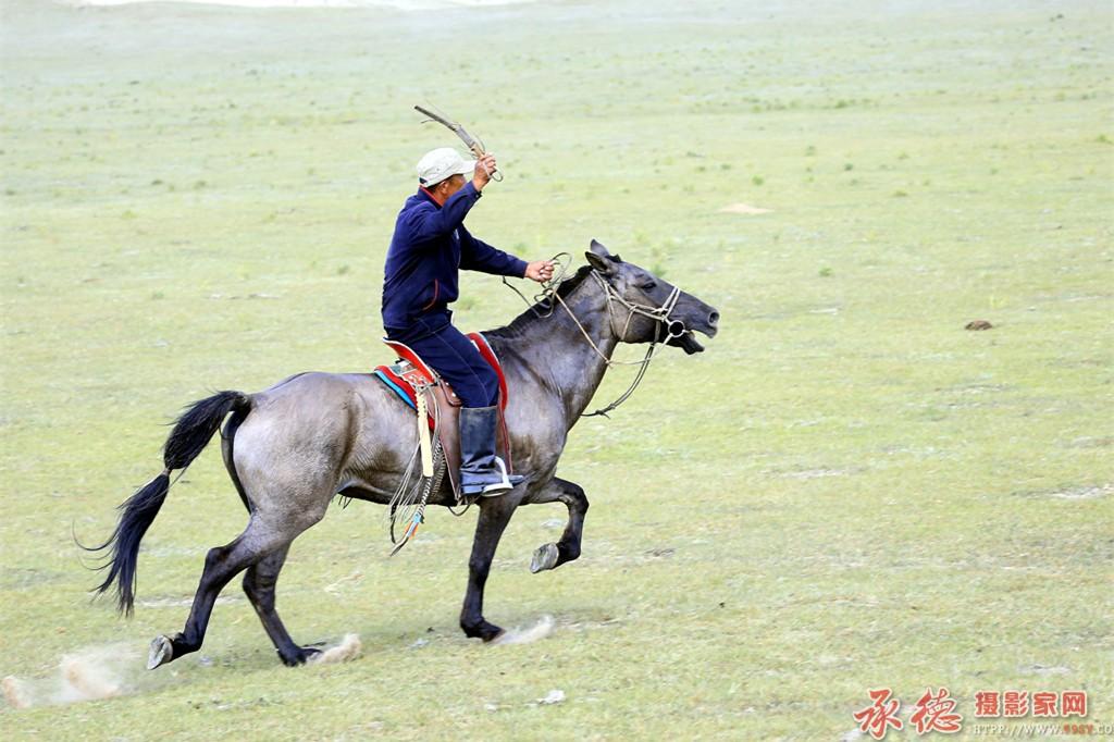 21草原骏马