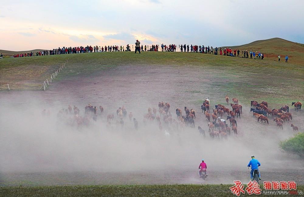 《2015坝上风光摄影大赛》获奖作品展