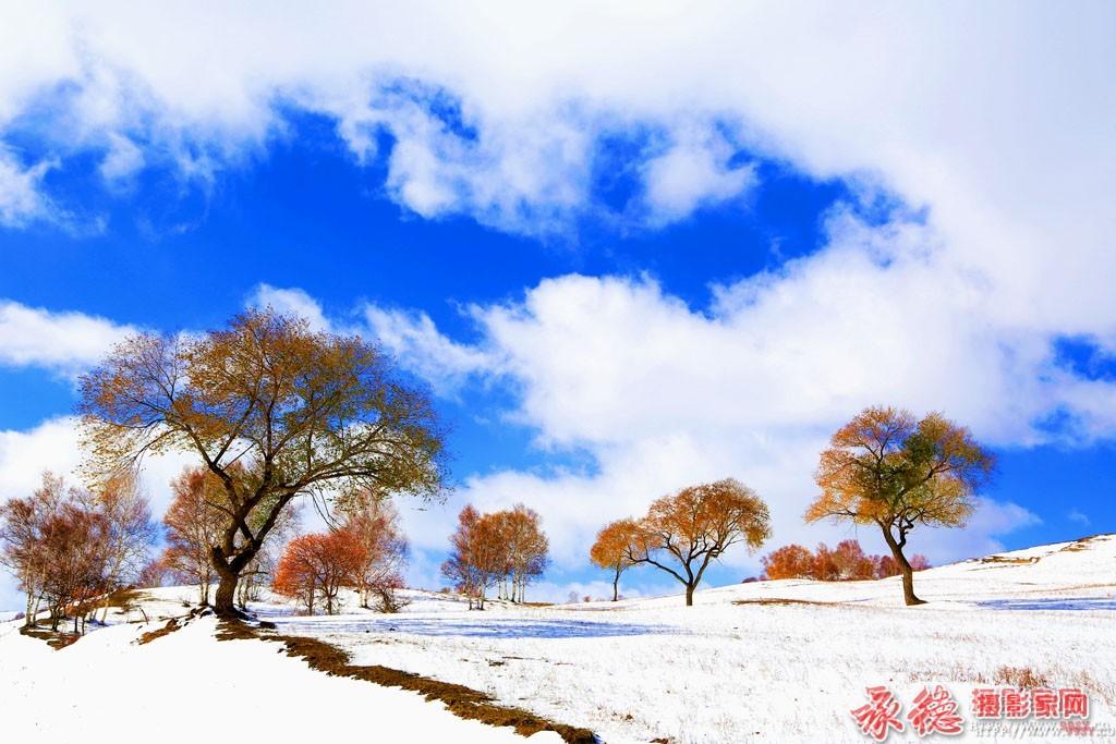 优秀奖:雪域之美  草根摄员