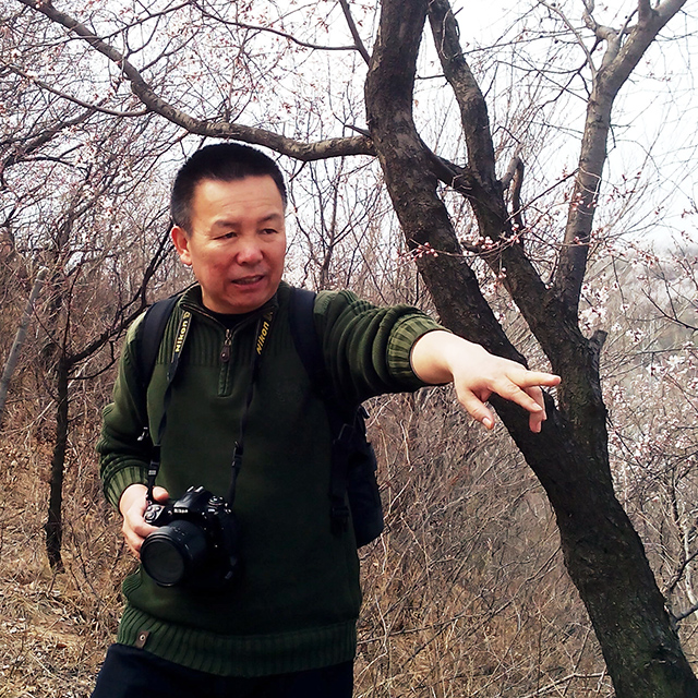 刘文龙影展作品