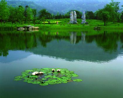 傅忠庆-12植物园