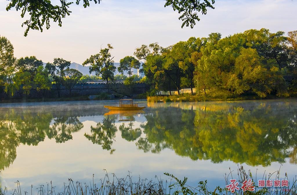 优秀奖-东湖一角-大漠胡杨