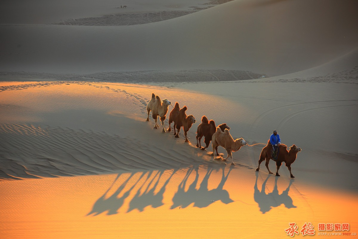 66.大漠驼铃-蓝色天空