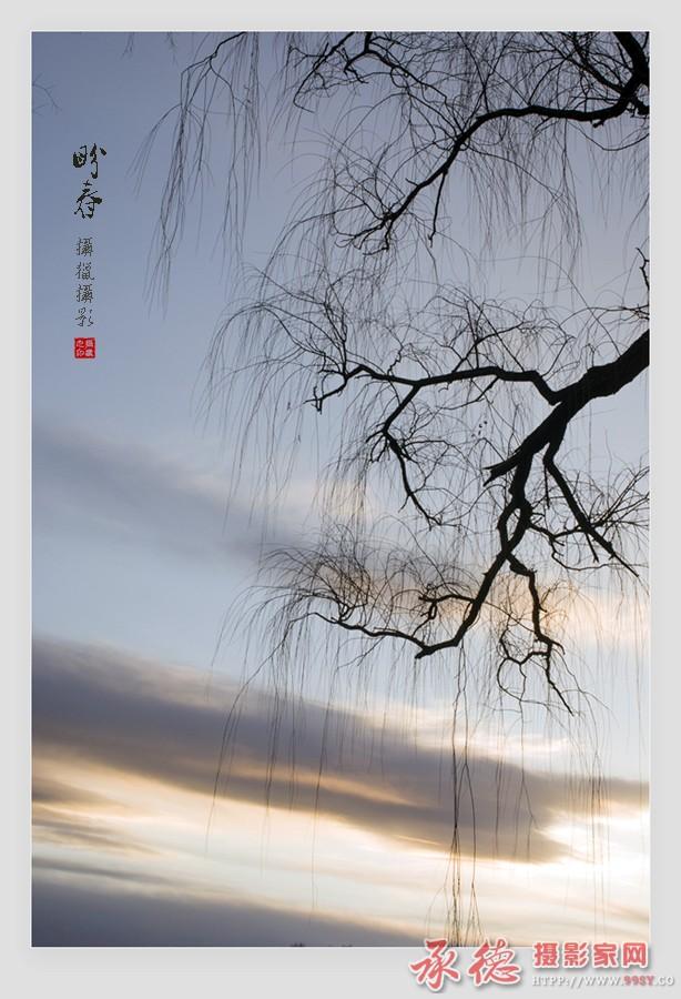 5.盼春-摄猎