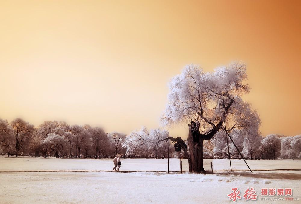 11.红外山庄片-龙飞