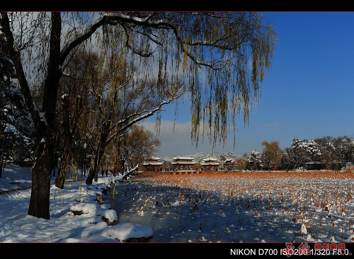 39.山庄雪景-温柔之光