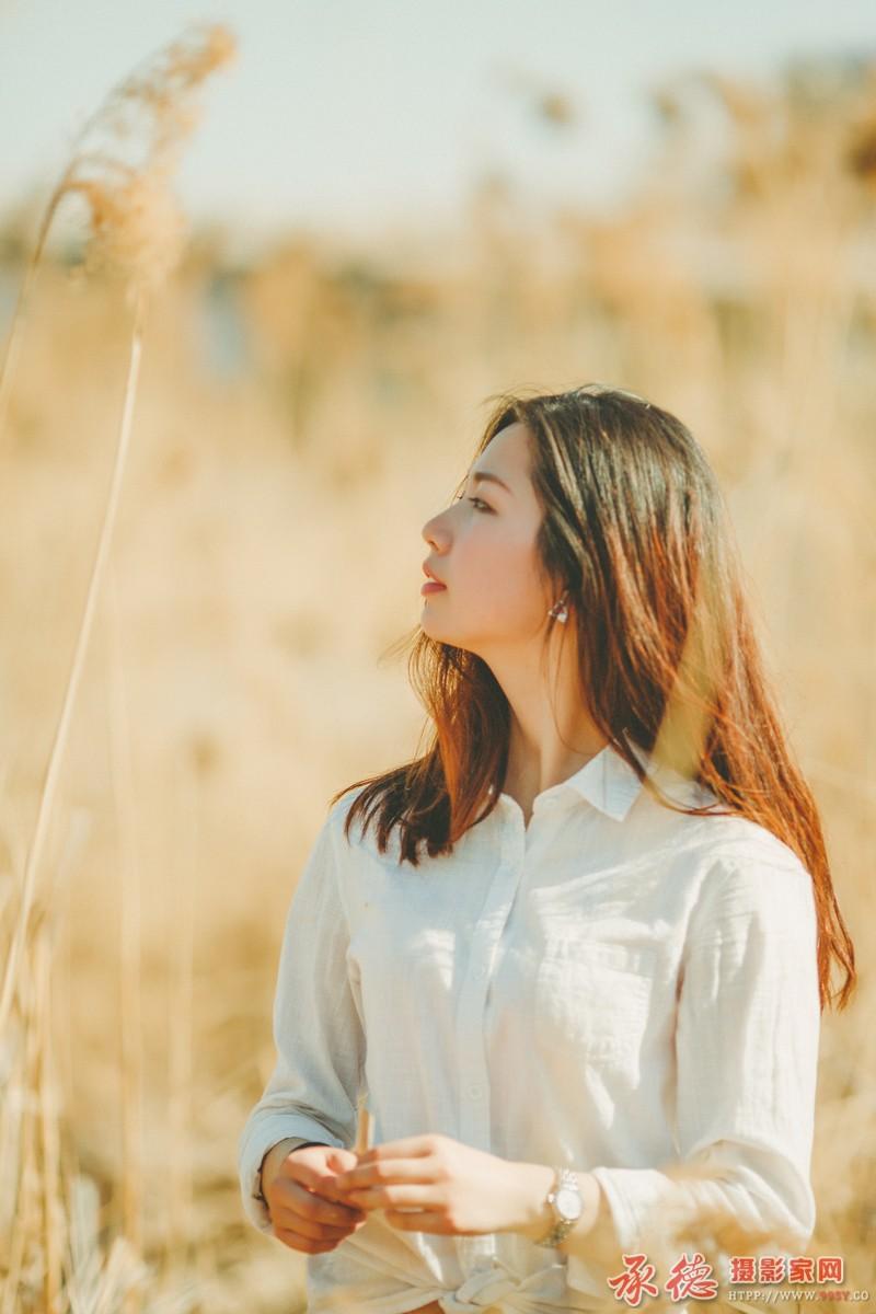 12.春日芦苇-寂寞的自由
