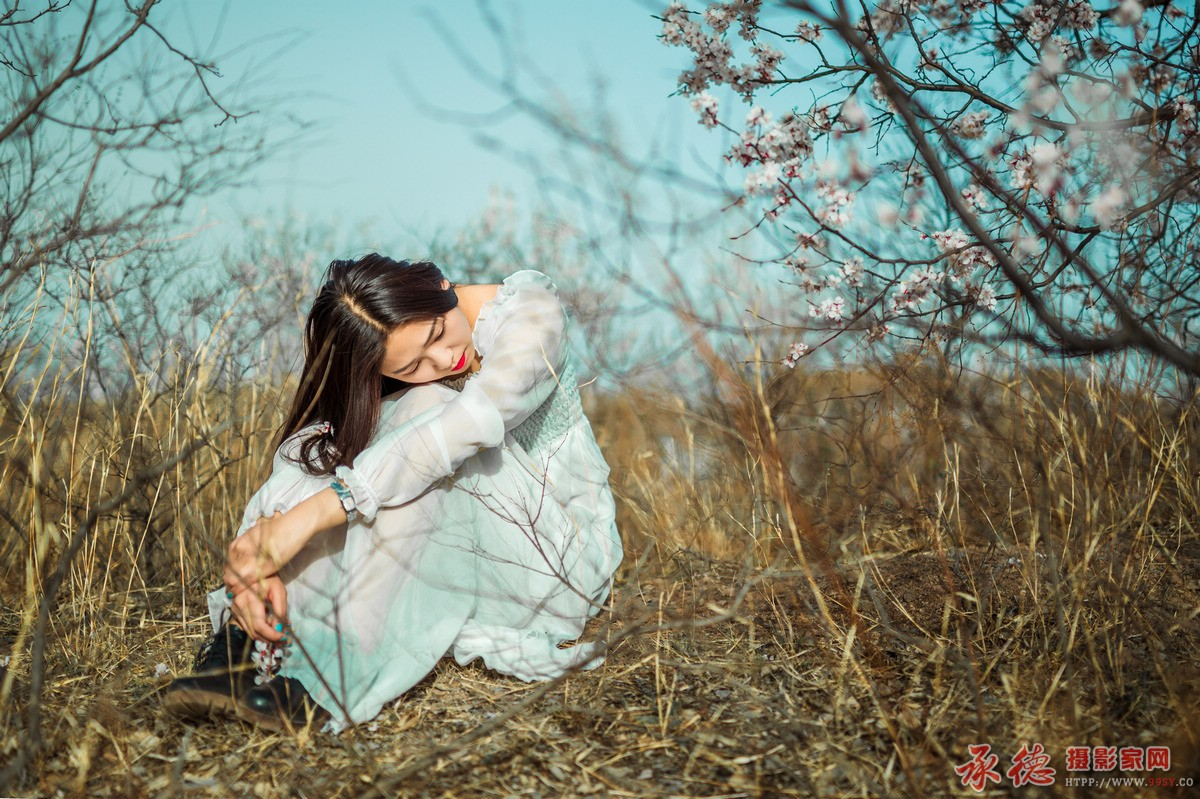 71.午后的小情绪-寂寞的自由