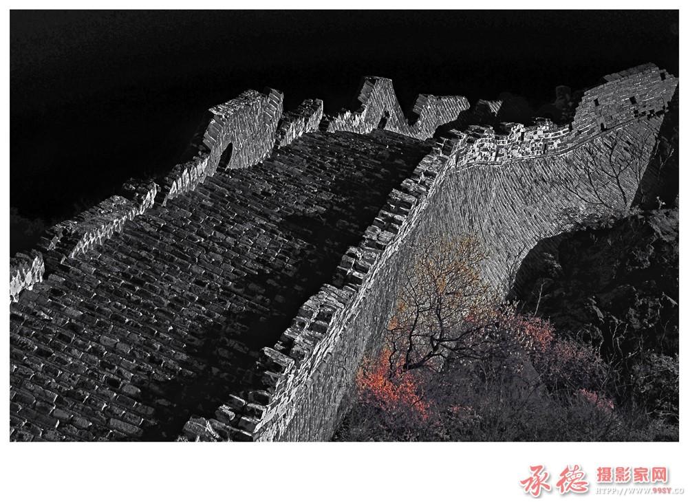 64、脊梁—红外线相机拍摄-龙飞