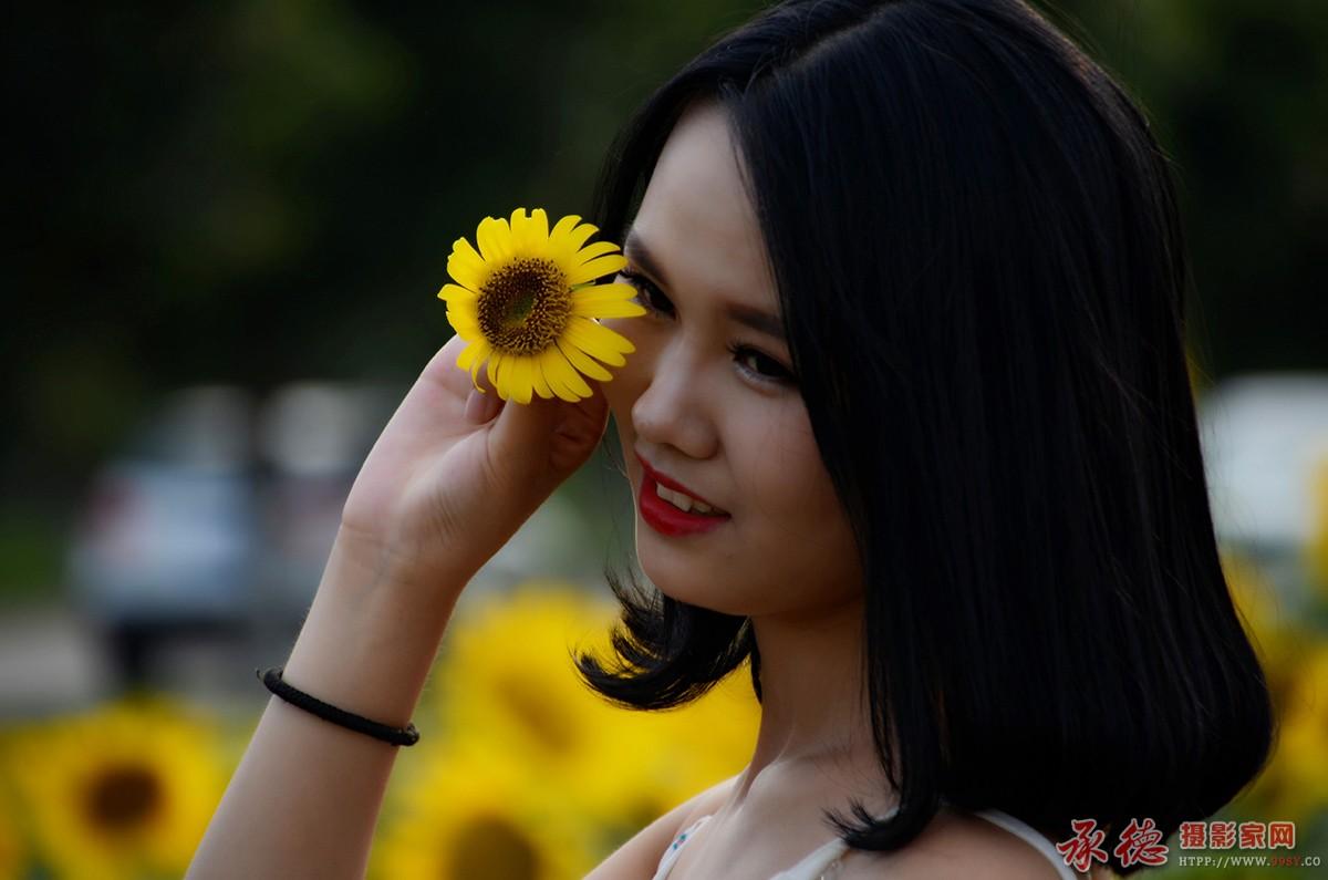 12-花样年华-风轻云淡