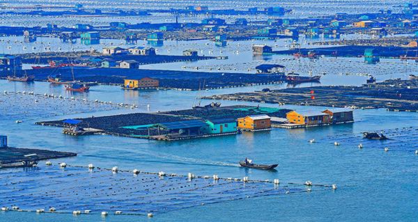 44-海上养殖