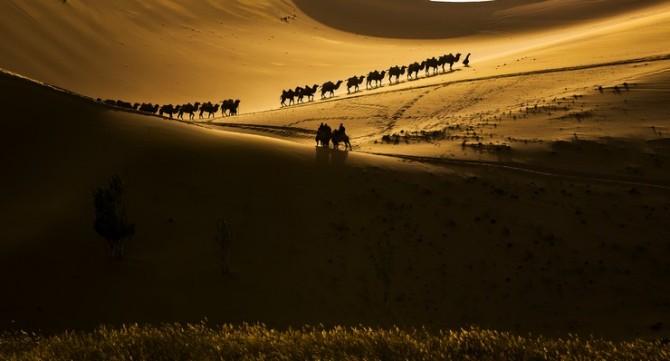 09号 《沙漠驼景》.jpg