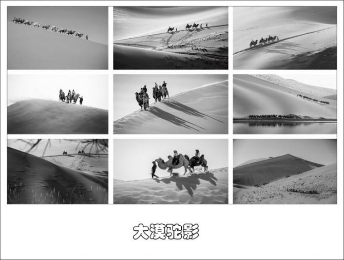 25号 《大漠驼影》.jpg