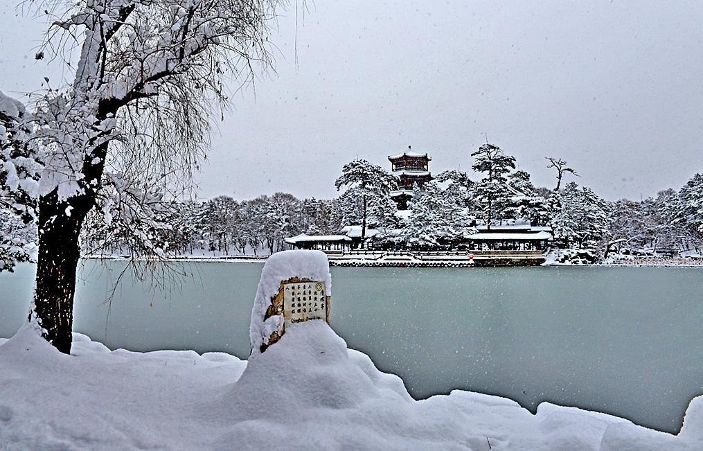 8-雪韵金山