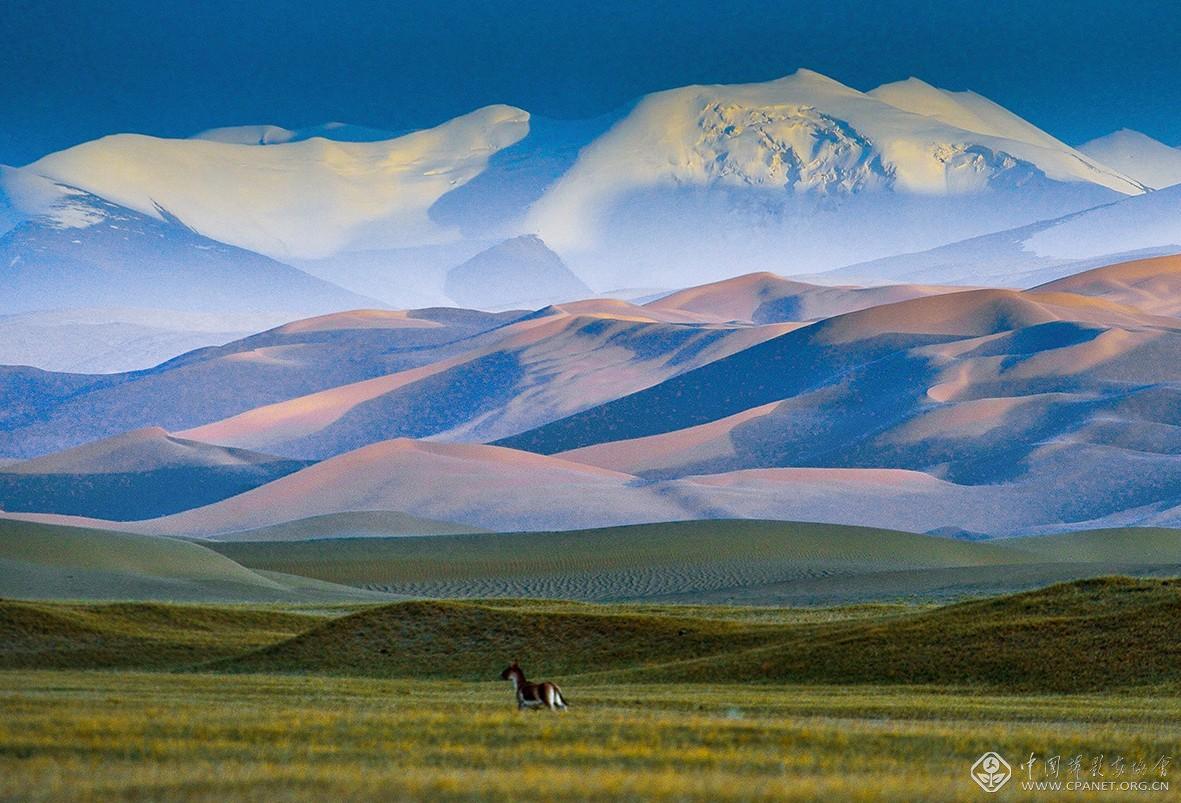 阿尔金高原昆仑山下的库木库里沙漠 摄影:马立新-176.5乘以120厘米   hgj1-6040.jpg