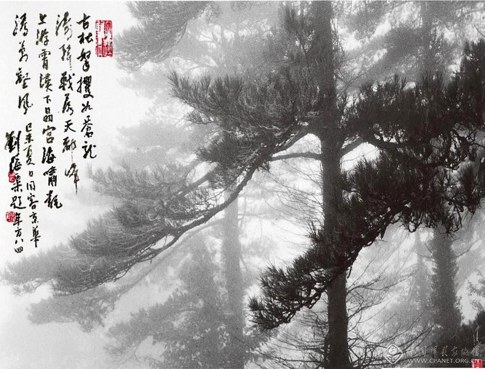 苍涛,1978 年    陈复礼 摄.jpg